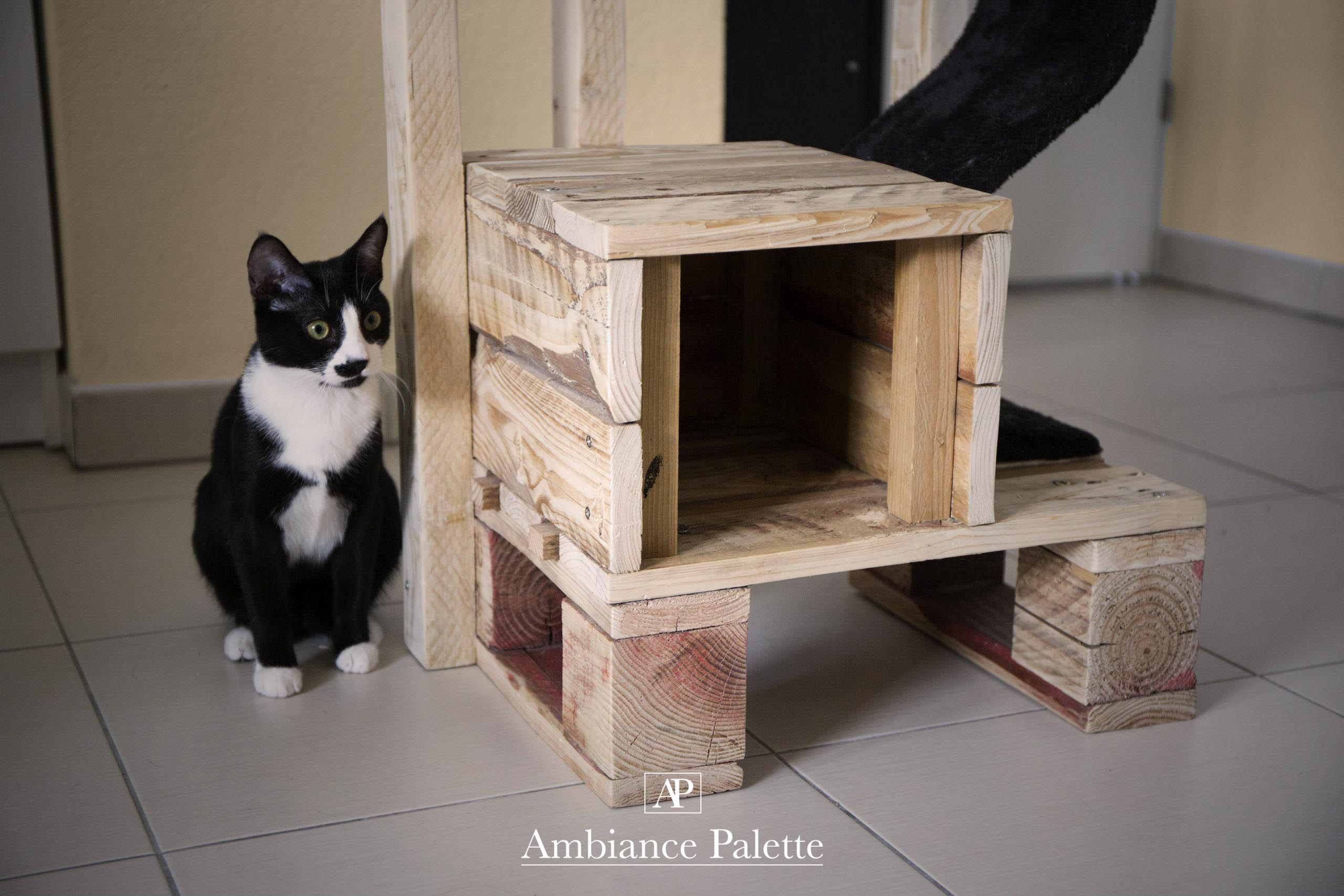 arbre chat ambiance palette. Black Bedroom Furniture Sets. Home Design Ideas